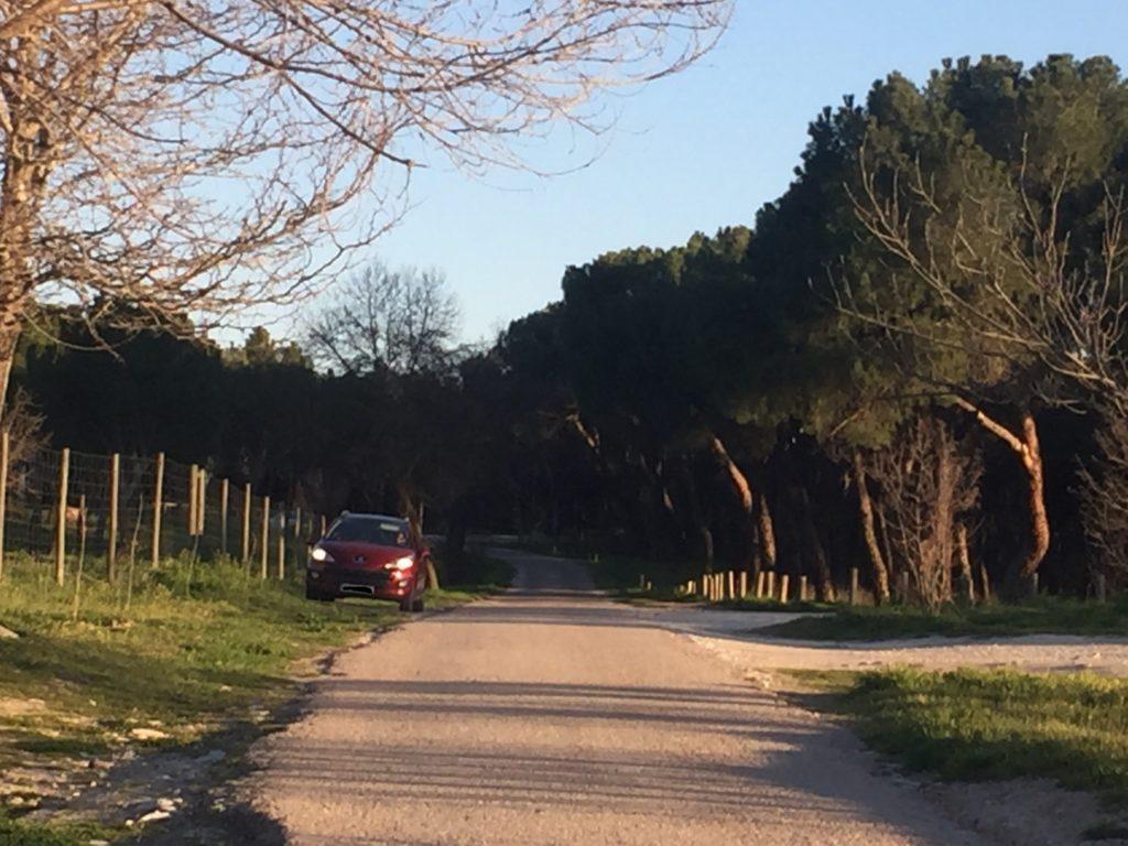 Más coches en Monte de El Pardo